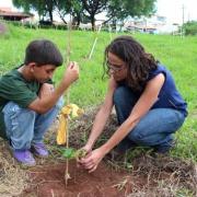 ASSOBIO کسب و کاری برای احیای جنگلها